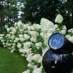 Zegarek inkWATCH TRIA Plus – recenzja