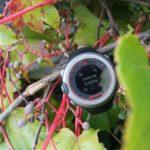 Zegarek GPS ONmove 220 Geonaute – recenzja