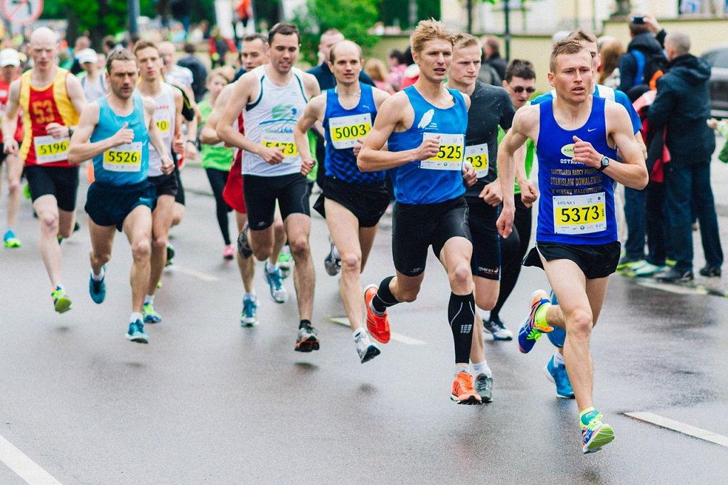 cf22a906 Półmaraton oczami najlepszych biegaczy. Poradnik. | BieganieUskrzydla.pl -  bieganie, trening, maraton