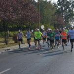Rekord tempa zapisów na półmaraton we Wrocławiu