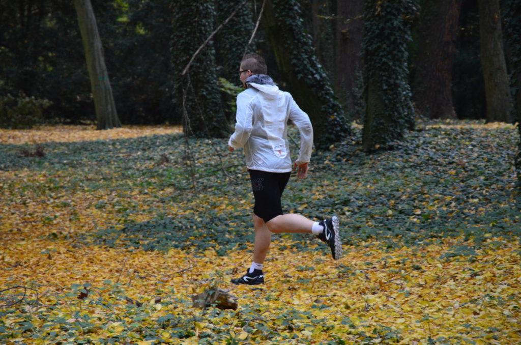 bieganie jesień