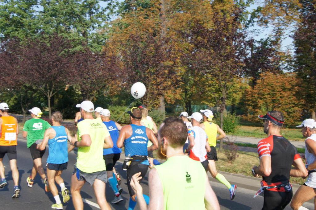 Poznań zmienił się w maraton! Wszystko za sprawą 19. edycji PKO Poznań Maraton
