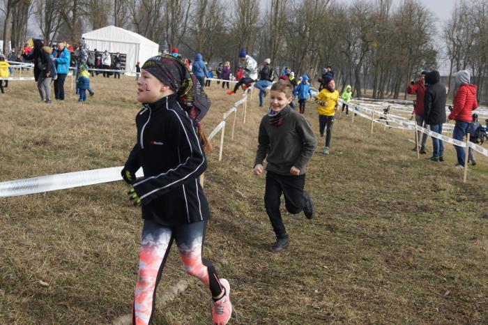 Runmageddon Kids i Junior we Wrocławiu