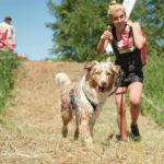 Hard Dog Race, czyli bieganie, przeszkody i psy! Jednego dnia!