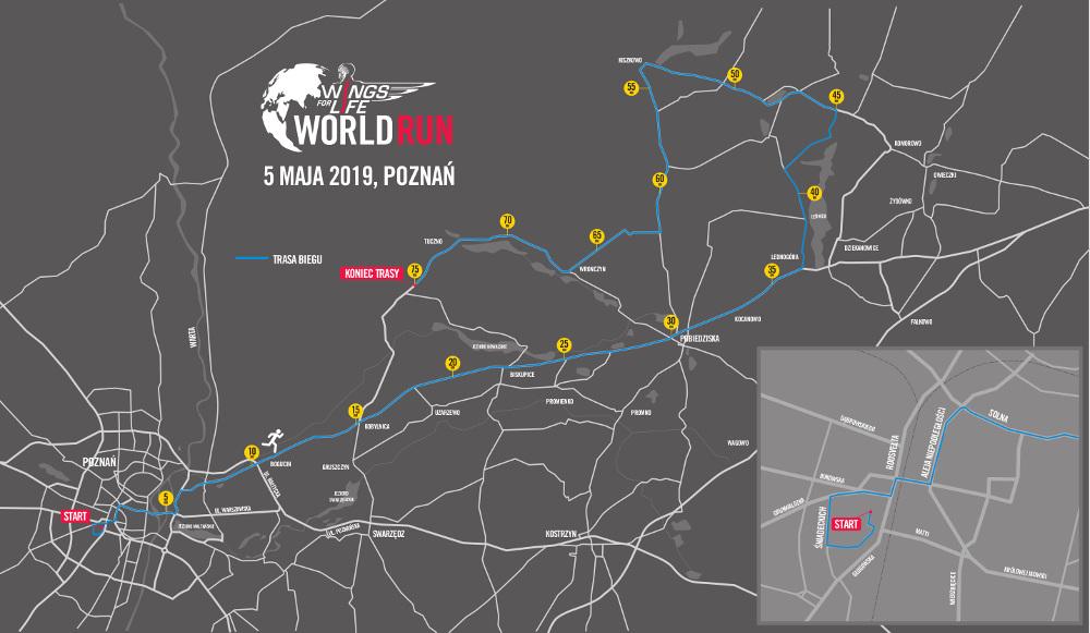 Wings for Life - 8000 osób w Poznaniu, 100 tys. na świecie
