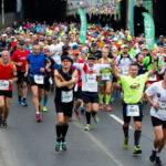W niedzielę 20. PKO Poznań Maraton. Jaka jest trasa? [TRASA]
