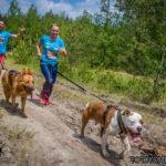 Hard Dog Race odbędzie się 25 kwietnia 2020 roku! [ZAPISY]