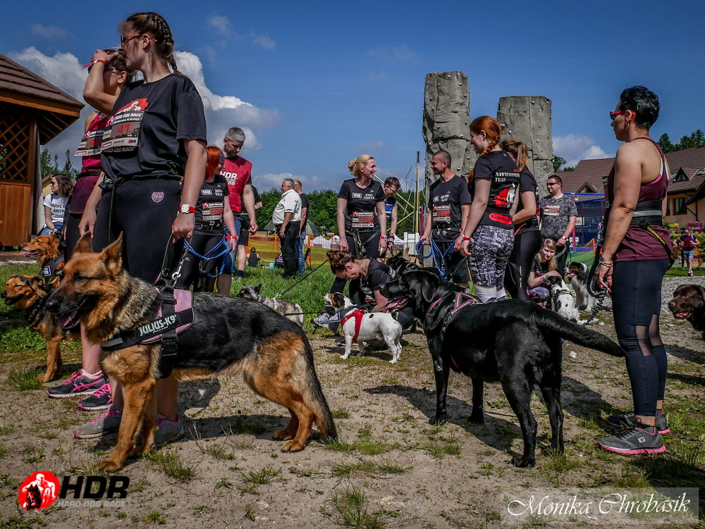 Zapisy na Hard Dog Race 2020